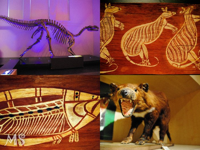 Natural history museum4-2
